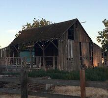 Rustic Barn at Dusk by JULIENICOLEWEBB