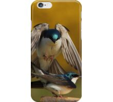 Tree Swallows mating #2  iPhone Case/Skin
