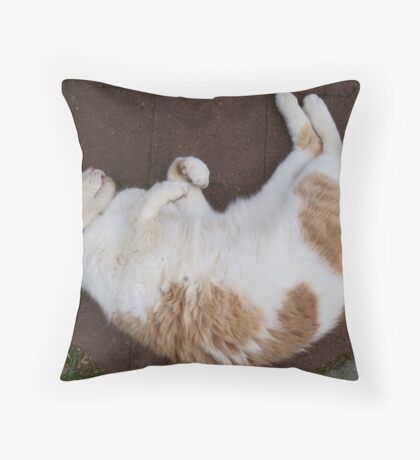 Purfect Throw Pillow