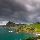 Fletcher Bay, Coromandel by Paul Mercer