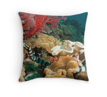 Banded Sea Krait off Port Moresby, Papua New Guinea Throw Pillow