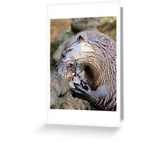 The Otter the Better Greeting Card