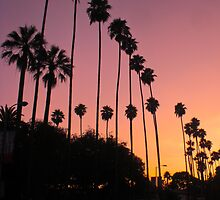 Sunset on Franklin- Los Angeles, CA by JD Delgado