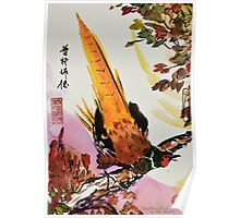 Chinese Pheasant on Branch Poster
