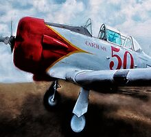 T6 Texan 2 by Gypsykiss