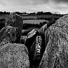 Knockroe passage tomb, County Kilkenny, Ireland by Andrew Jones