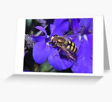 Fairy Wings Greeting Card