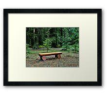 Forest Bench Framed Print
