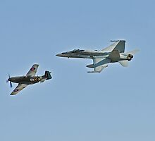 Mustang and Super Hornet by bazcelt