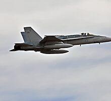 Super Hornet by bazcelt