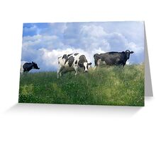 Cow Dreams Greeting Card