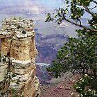 South Rim Trail of Grand Canyon, Arizona by David  Hughes