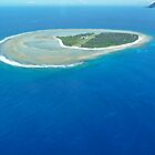 Lady Elliot Island by thatkellychic