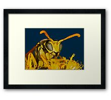 Natural Beeauty  Framed Print