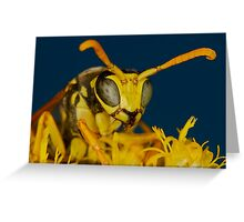 Natural Beeauty  Greeting Card