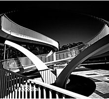 Lines and Curves by threewisefrogs