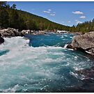 Wonderful Norway . Otta River . Oppland . Brown Sugar Story. by © Andrzej Goszcz,M.D. Ph.D