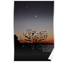 Sunset over Flying Fish Cove Poster