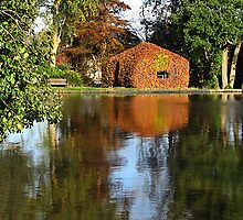 Beech House On The Lake At Forde Abbey, Dorset , Uk by lynn carter