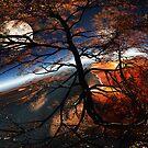 Island of Dreams by MaxSteinwald