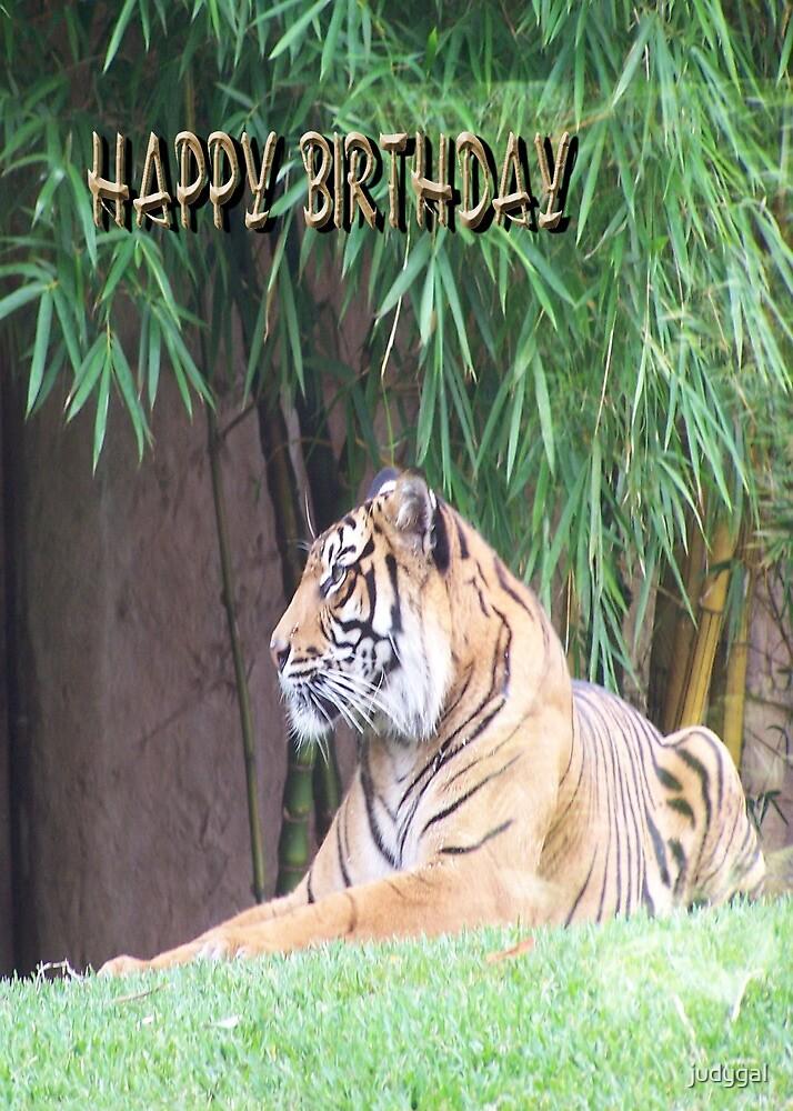 Tiger - Birthday Card by judygal