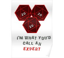 Natural 20. I'm what you call an expert. Poster