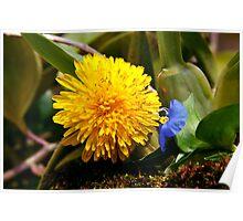 Micro Garden Poster
