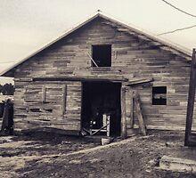 Rustic old barn  by JULIENICOLEWEBB
