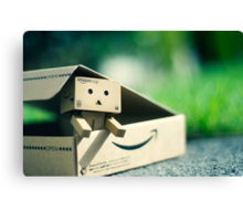Danbo is Home Canvas Print