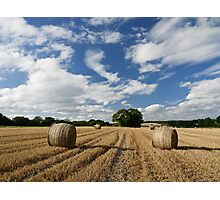 Harvested field Photographic Print