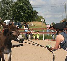 Aasipäivät ('Donkey weekend') in Inkoo, Finland #3 by homesick