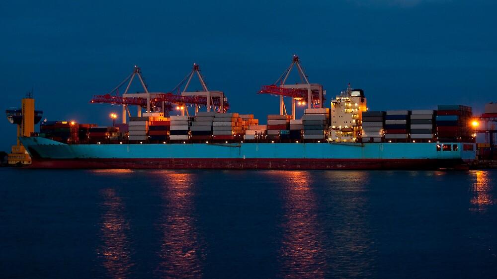 Cargo ship on loading in the port by Dfilyagin