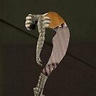 Dancer by Mark Skay