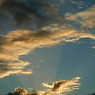 Rays of light by DebYoung