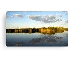 Rush near the water Canvas Print