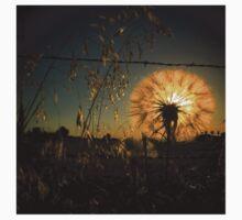 Illuminating dandelion at dusk One Piece - Short Sleeve
