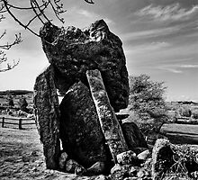 Kilmogue Portal Tomb, County Kilkenny, Ireland by Andrew Jones