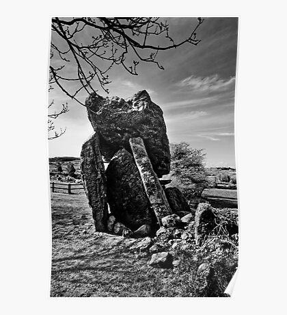 Kilmogue Portal Tomb, County Kilkenny, Ireland Poster