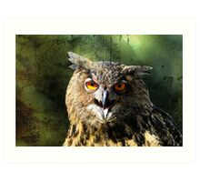 Manipulated Owl Art Print