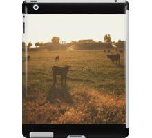 Cattle at sunset iPad Case/Skin
