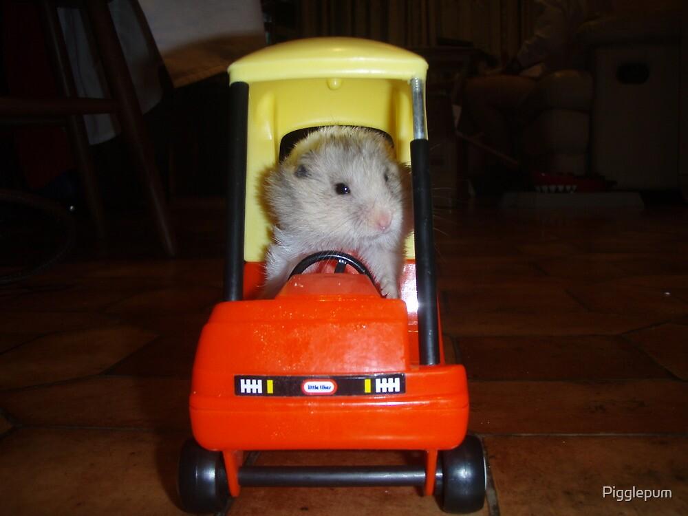 Hamster trip by Pigglepum