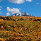 Autumn in Colorado by Luann wilslef