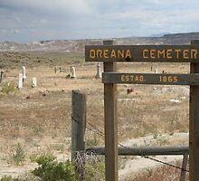 Oreana Cemetery by Shanna Dewey