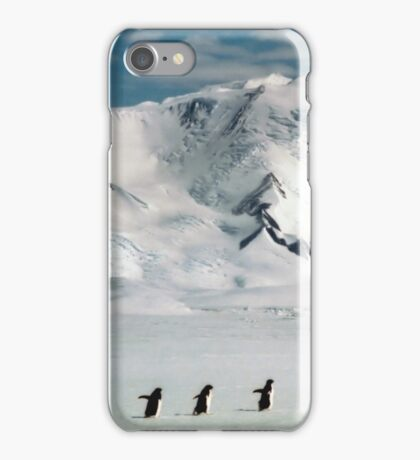 Adelie Penguins at Cape Hallett iPhone Case/Skin