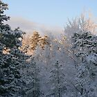 Sun Snow and Swedes by nickspics