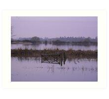 Misty Floods Art Print