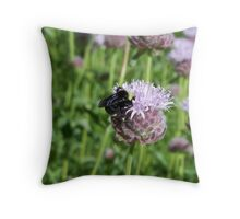 I'm a little baby bumble bee... Throw Pillow