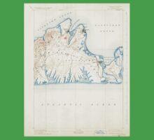 Massachusetts  USGS Historical Topo Map MA Marthas Vineyard 352842 1894 62500 One Piece - Short Sleeve