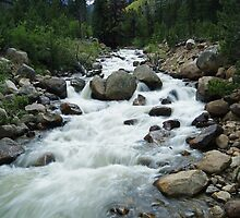Mountain Stream by Richard Williams