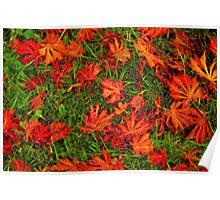 Plastic Autumn Poster